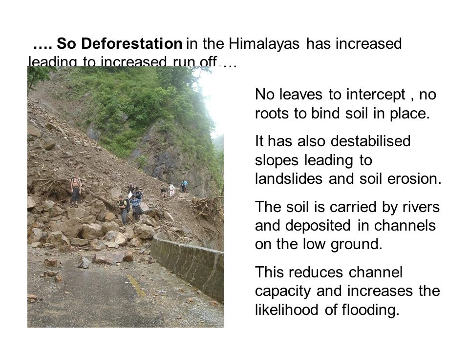 …. So Deforestation in the Himalayas has increased leading to increased run off….