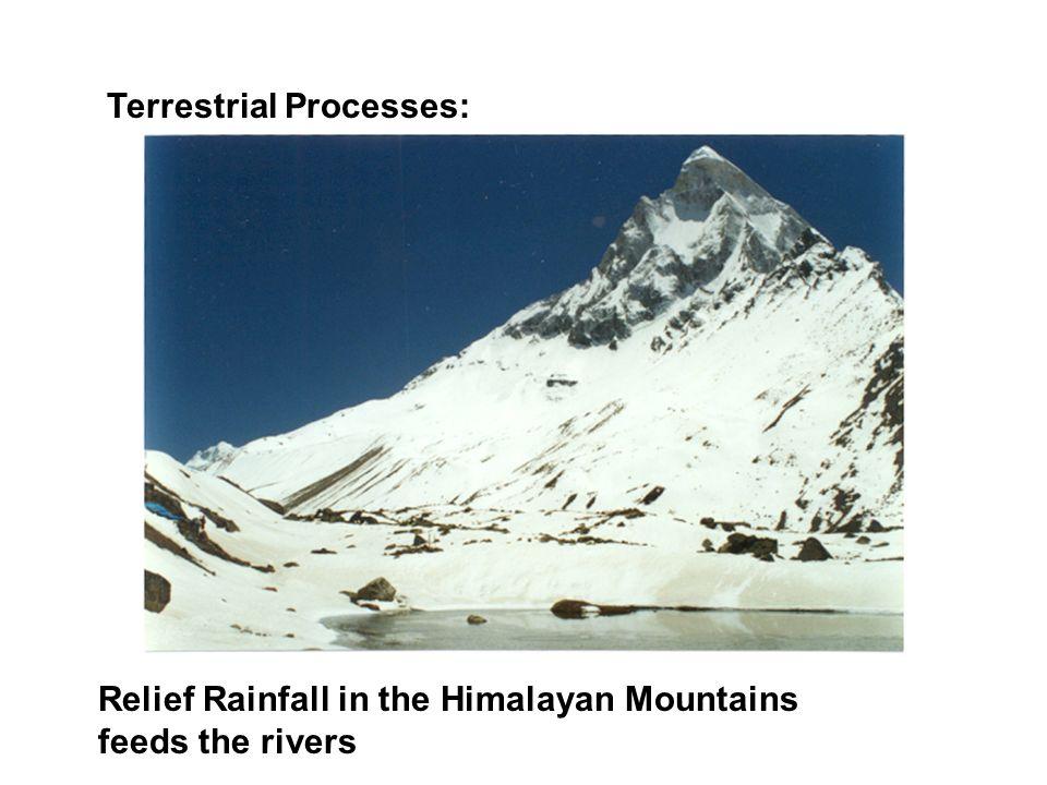 Terrestrial Processes:
