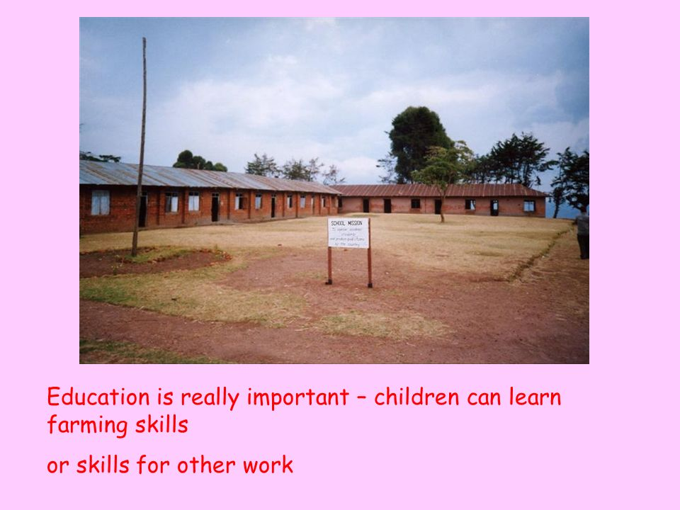 Education is really important – children can learn farming skills