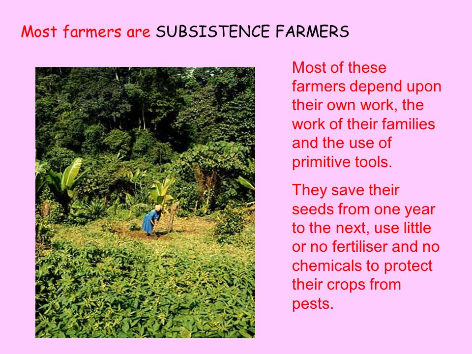Most farmers are SUBSISTENCE FARMERS