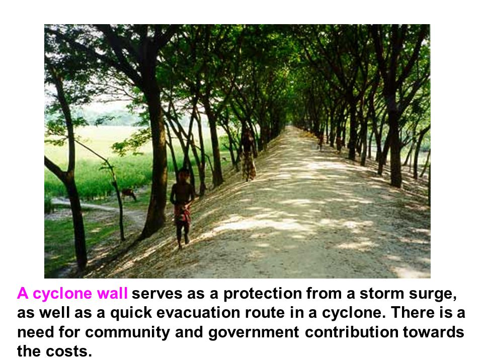 A cyclone wall serves as a protection from a storm surge, as well as a quick evacuation route in a cyclone.