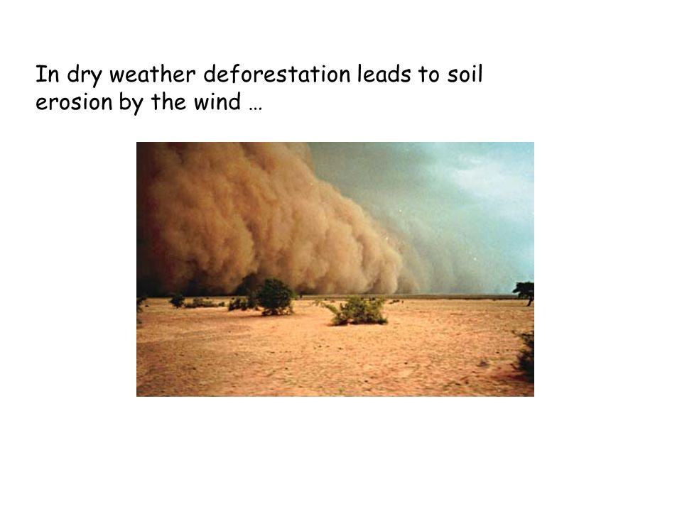 In dry weather deforestation leads to soil erosion by the wind …