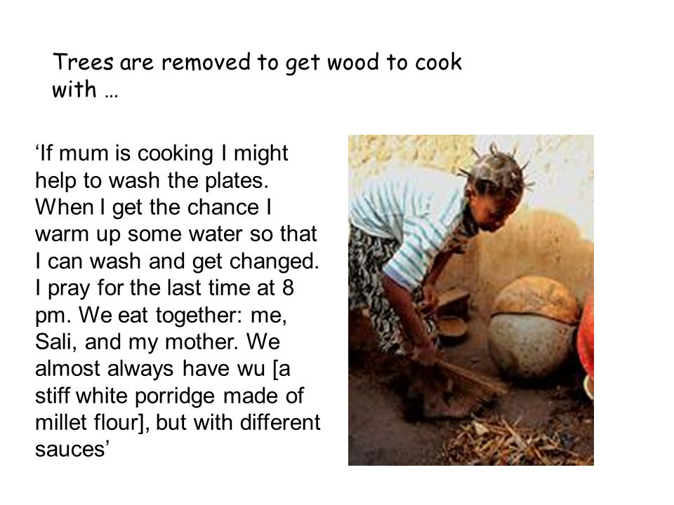 Trees are removed to get wood to cook with …