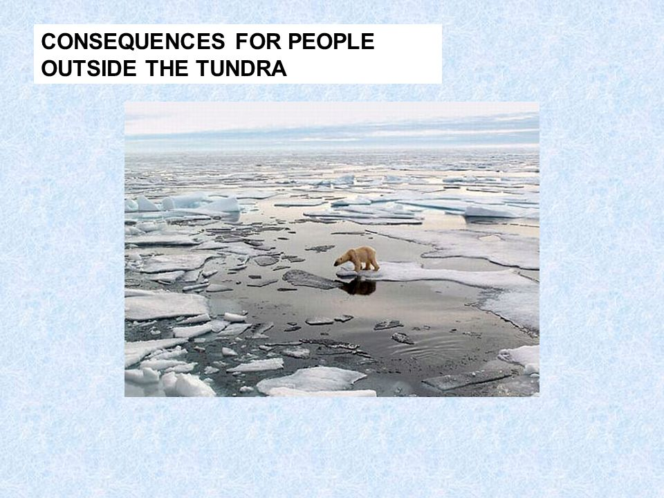 CONSEQUENCES FOR PEOPLE OUTSIDE THE TUNDRA