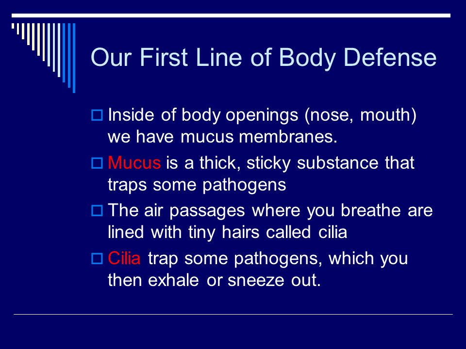 Our First Line of Body Defense