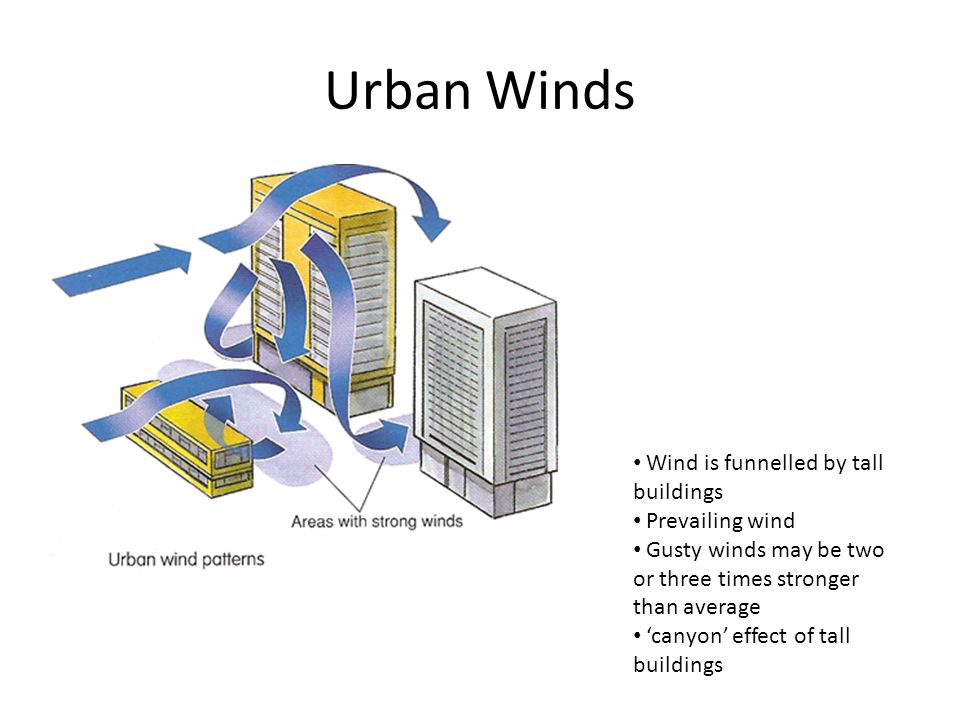 Urban Winds Wind is funnelled by tall buildings Prevailing wind