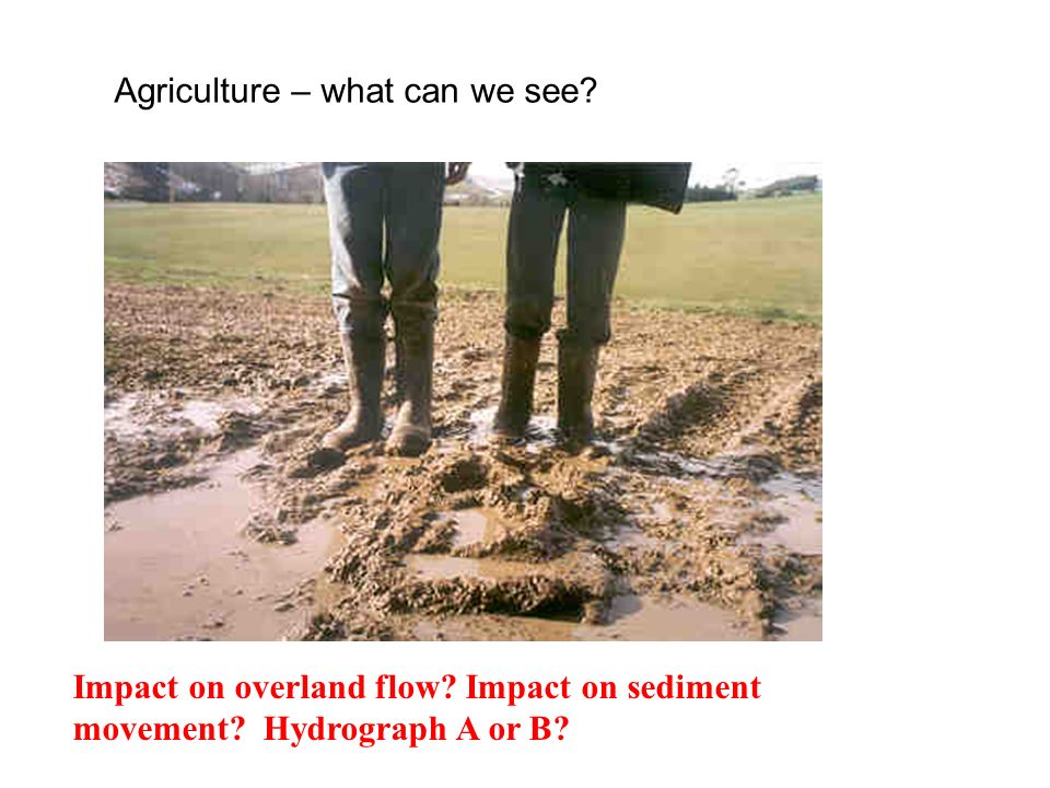 Agriculture – what can we see