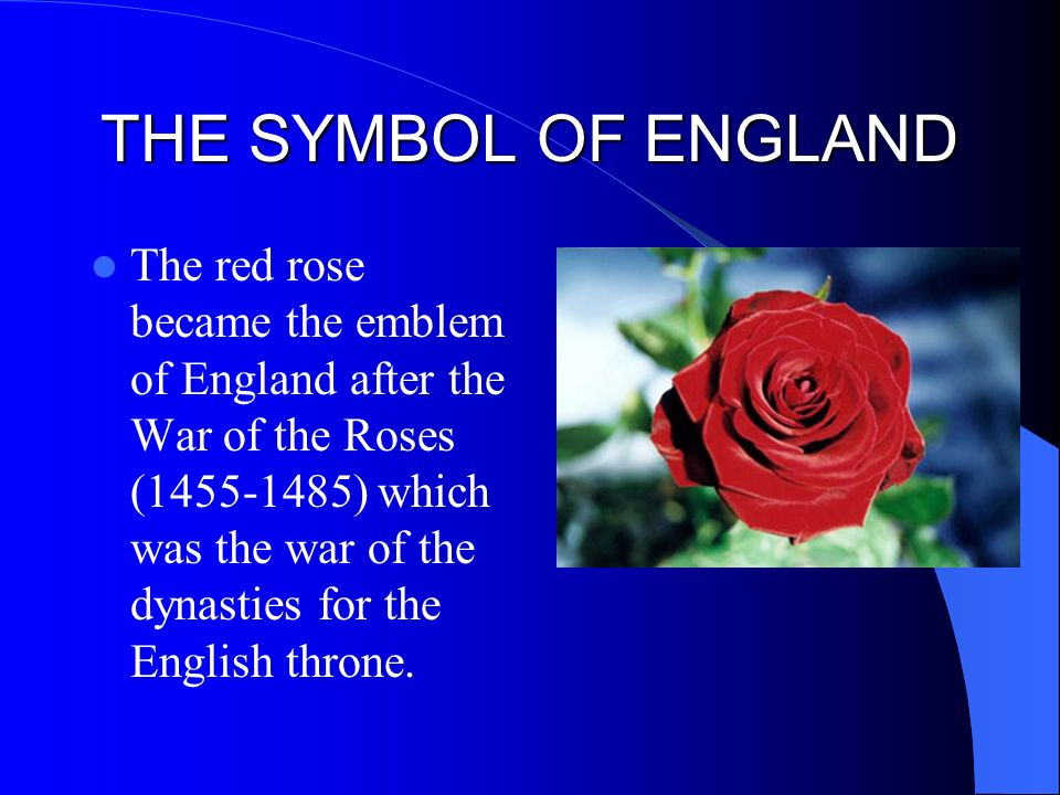 an analysis of the war of the roses in the throne of england Competing claims to the throne and the beginning of civil war  warwick  regrouped the yorkist forces and returned to england in june 1460,.