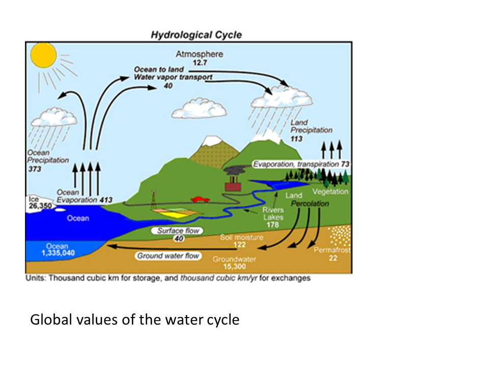 Global values of the water cycle