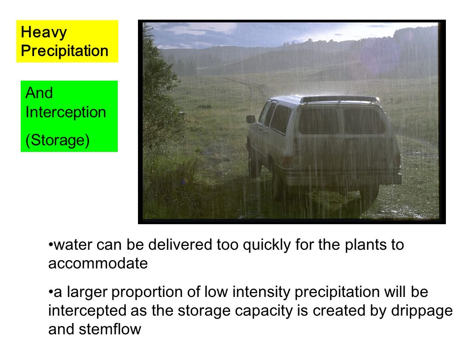 Heavy Precipitation And Interception. (Storage) water can be delivered too quickly for the plants to accommodate.