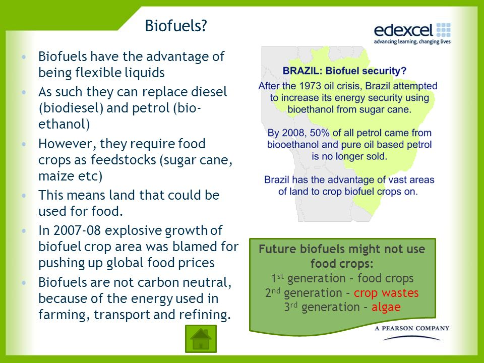 Future biofuels might not use food crops: