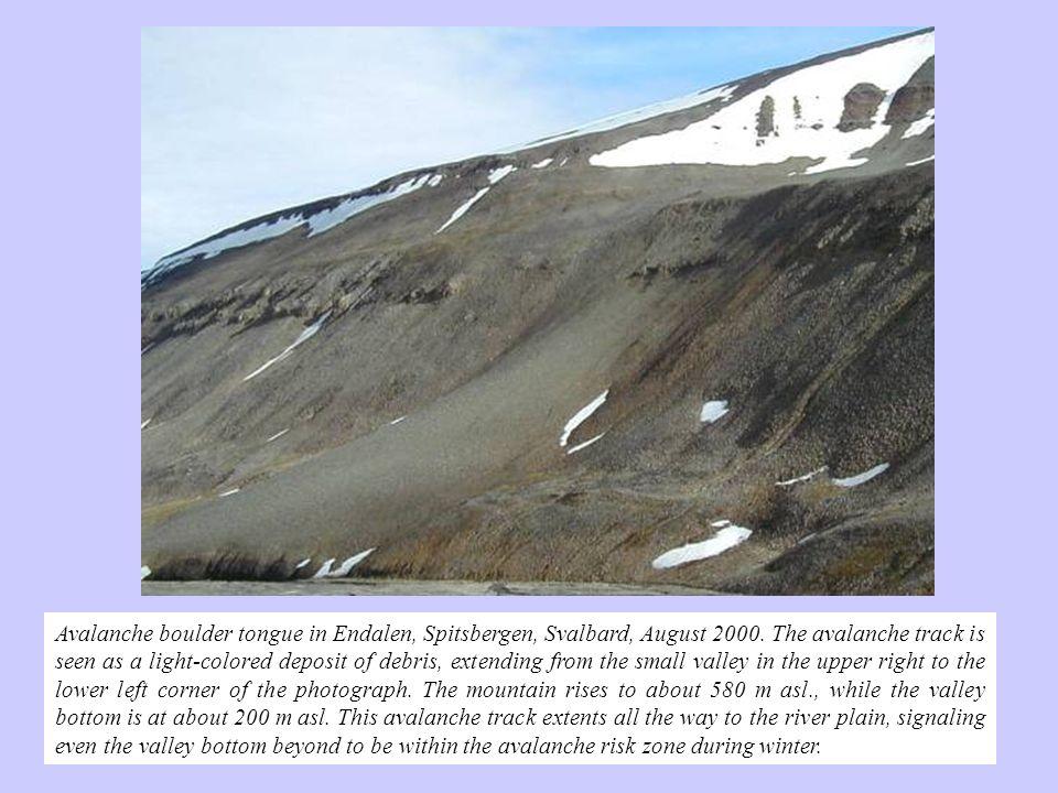 Avalanche boulder tongue in Endalen, Spitsbergen, Svalbard, August 2000.