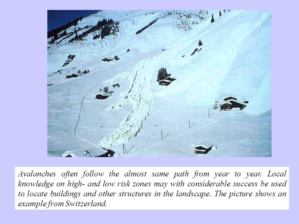 Avalanches often follow the almost same path from year to year