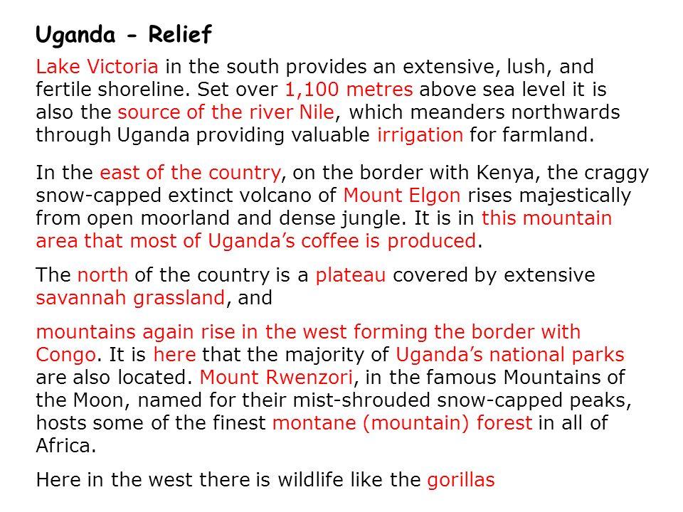 Uganda - Relief
