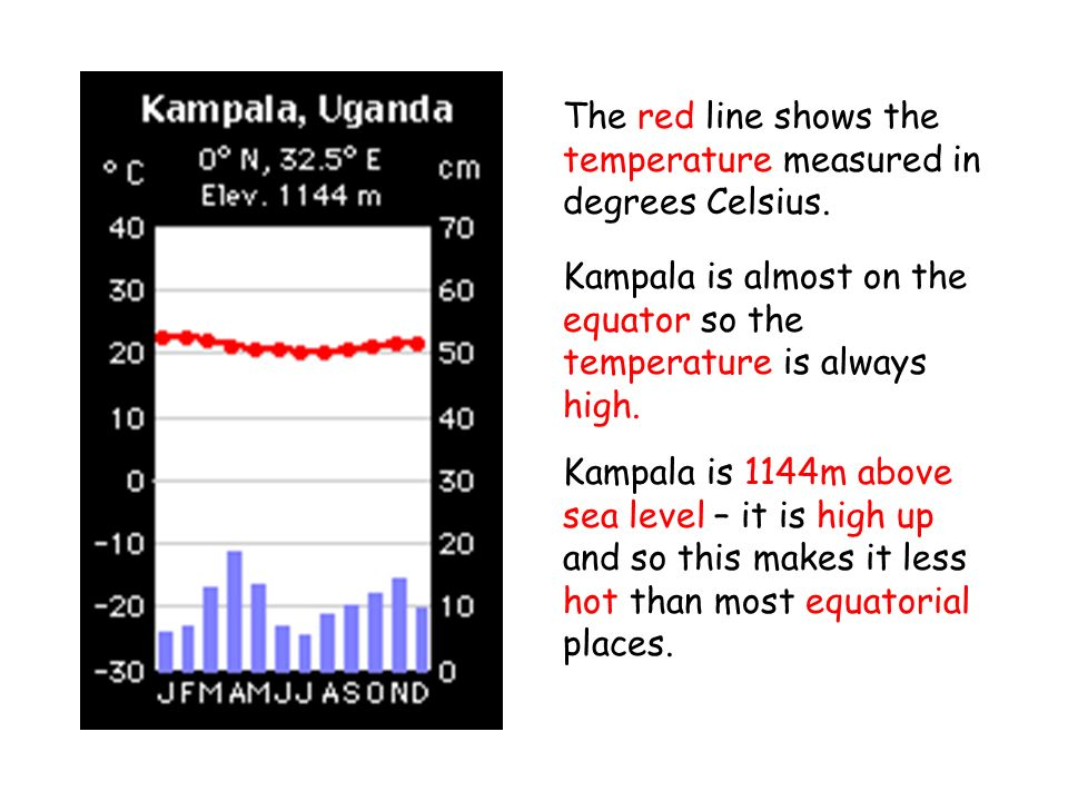 The red line shows the temperature measured in degrees Celsius.
