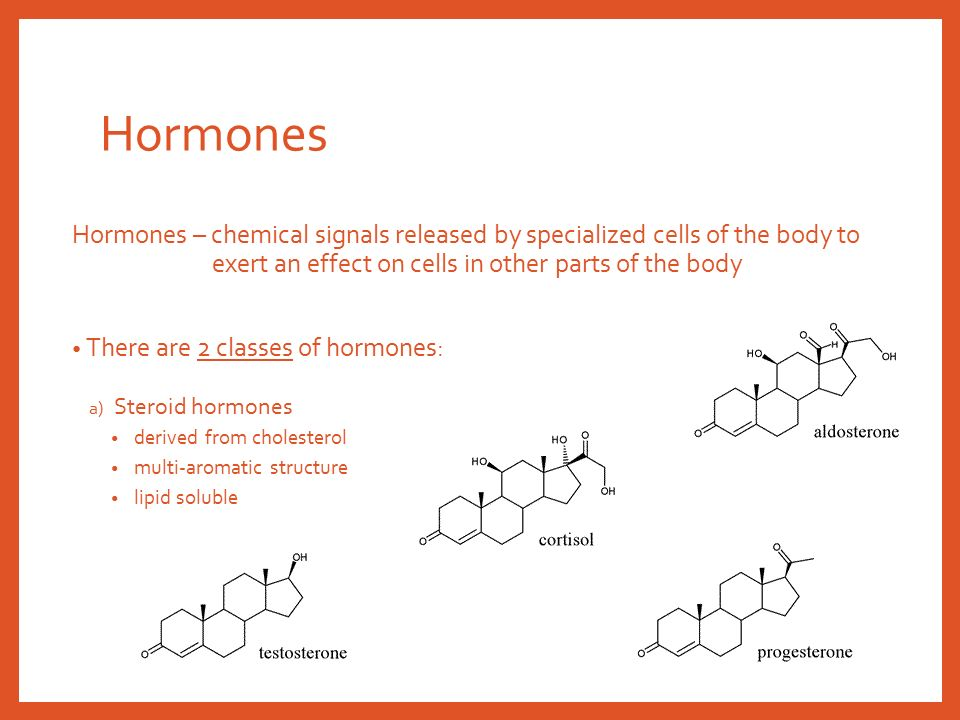 steroid hormones exert their action by quizlet
