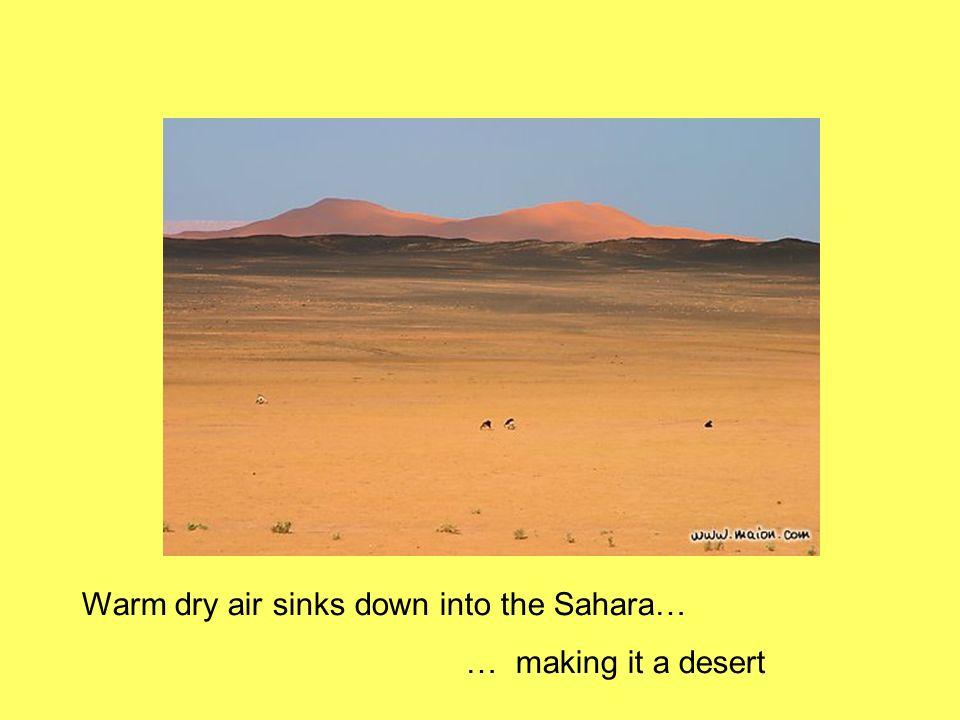 Warm dry air sinks down into the Sahara…
