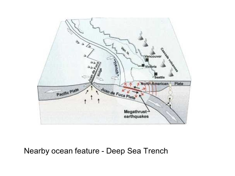 Nearby ocean feature - Deep Sea Trench
