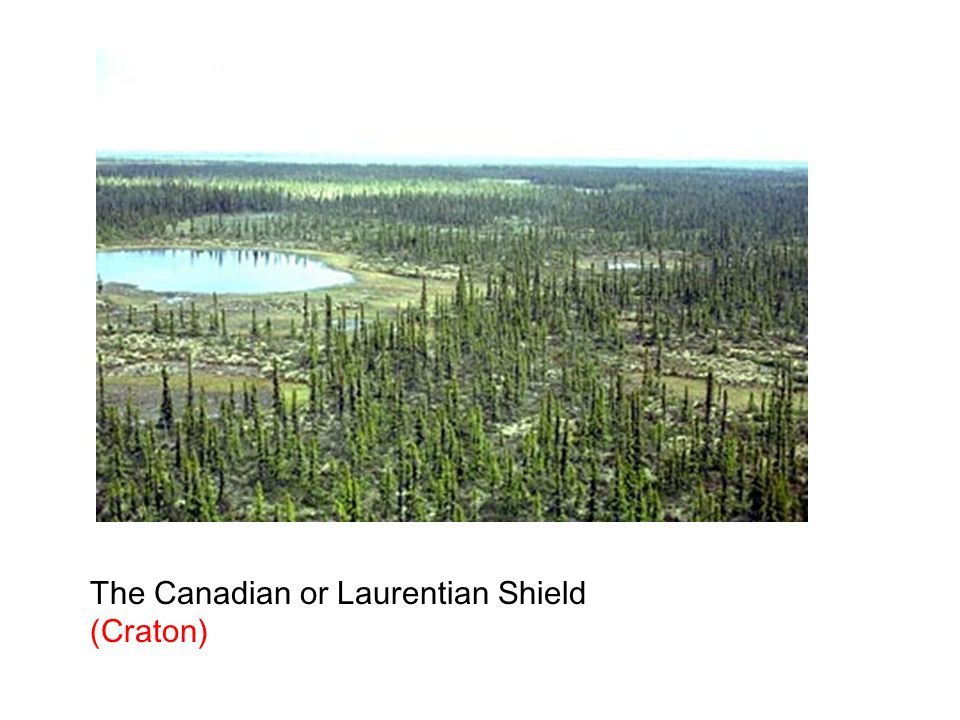 The Canadian or Laurentian Shield (Craton)