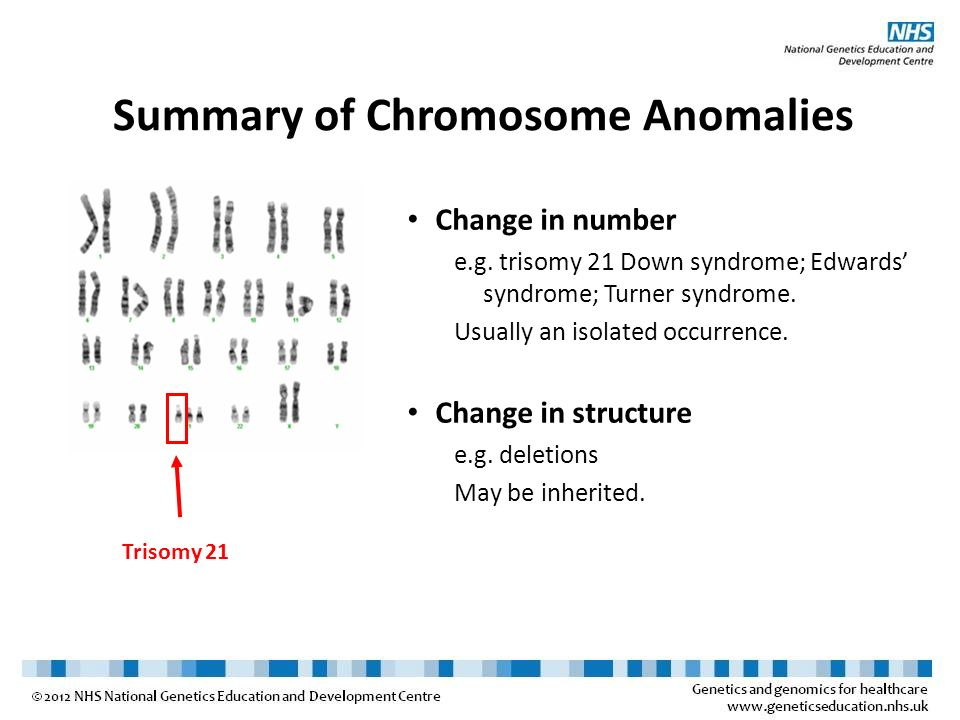 Summary of Chromosome Anomalies