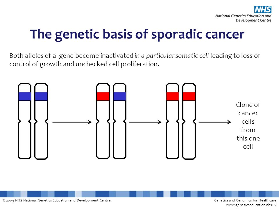The genetic basis of sporadic cancer