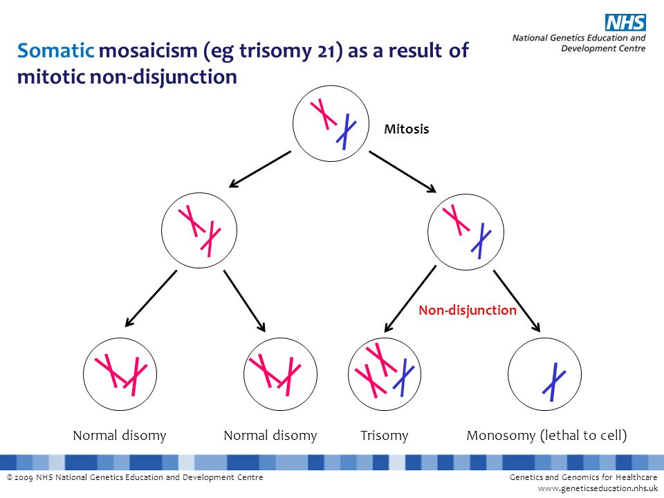 Somatic mosaicism (eg trisomy 21) as a result of mitotic non-disjunction