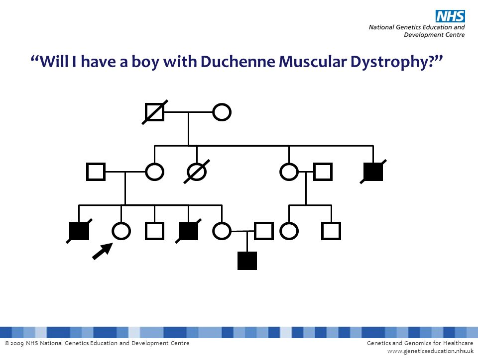 Will I have a boy with Duchenne Muscular Dystrophy