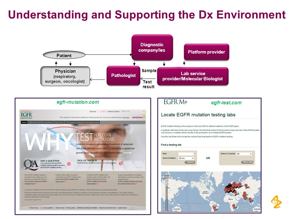 Understanding and Supporting the Dx Environment