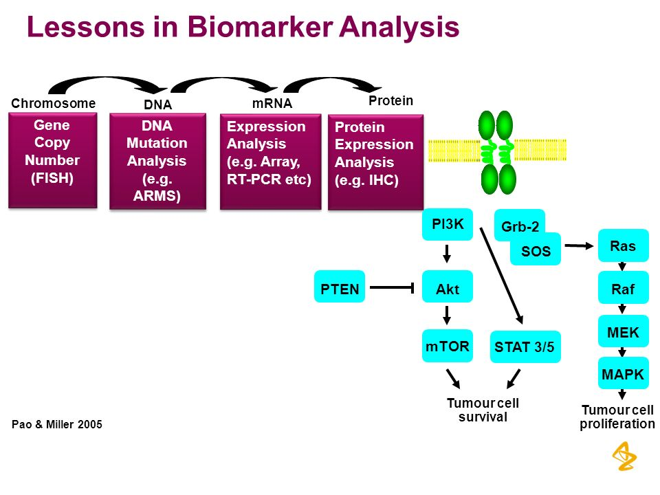 Lessons in Biomarker Analysis