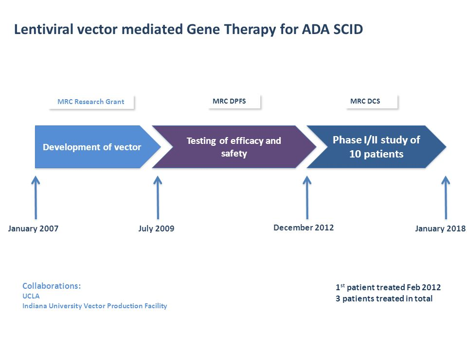 Testing of efficacy and safety Phase I/II study of 10 patients
