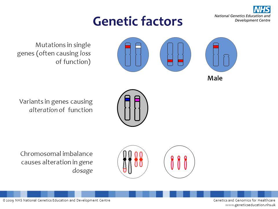 Genetic factors Male. Mutations in single genes (often causing loss of function) Variants in genes causing alteration of function.