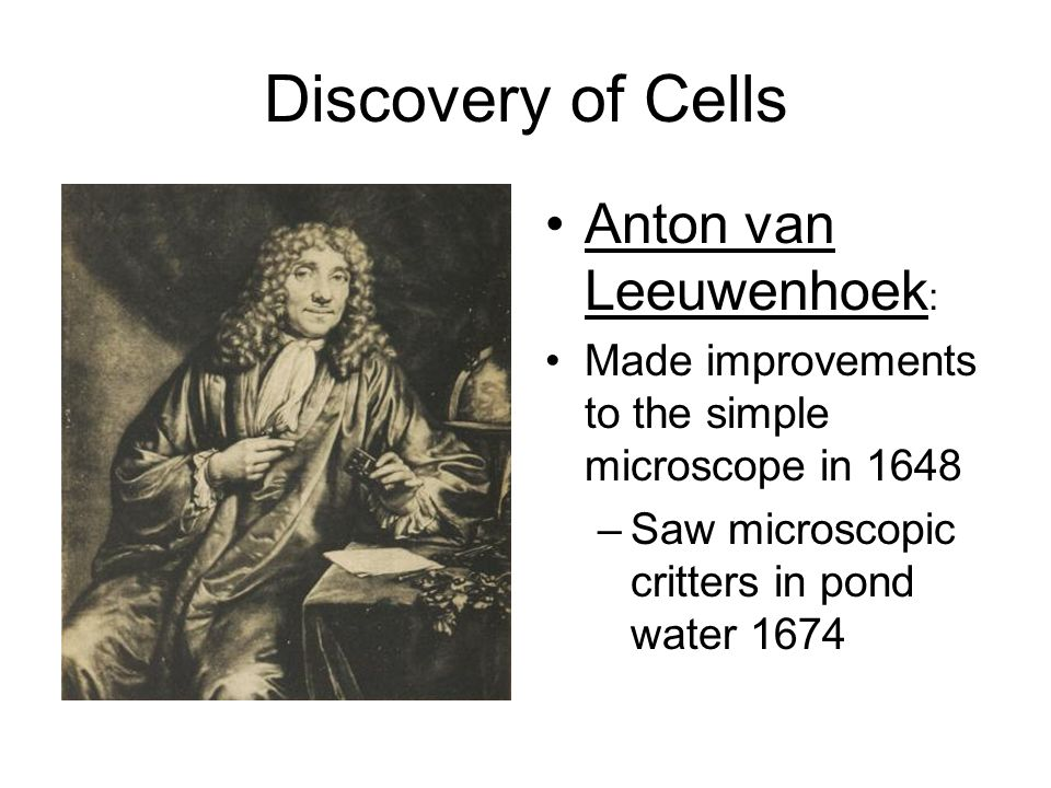 CELLS Unit ppt video online download