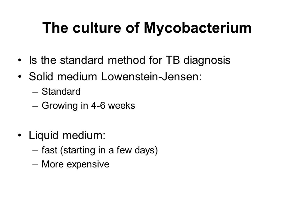 The culture of Mycobacterium