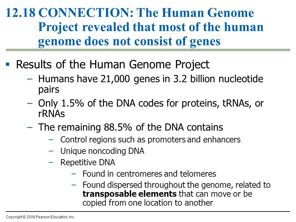 essays what impact has the human genome project on our Human genome project essay what is the human genome its entirety created $966 billion in economic impact and $ similar to human genome project essay[1.