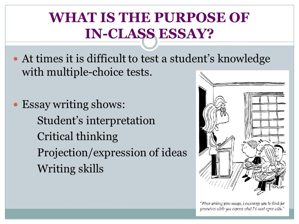 essay structure by kristina yegoryan ppt video online  what is the purpose of in class essay