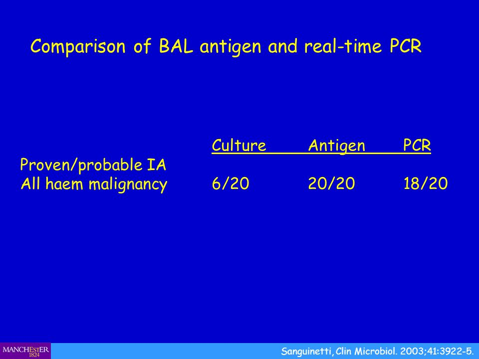 Comparison of BAL antigen and real-time PCR