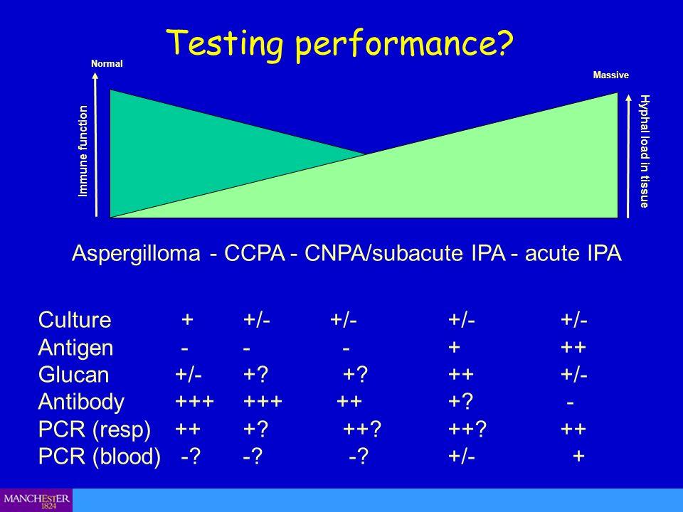 Aspergilloma - CCPA - CNPA/subacute IPA - acute IPA
