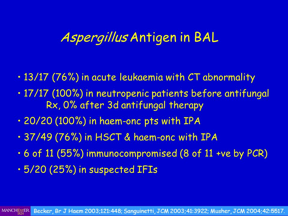 Aspergillus Antigen in BAL