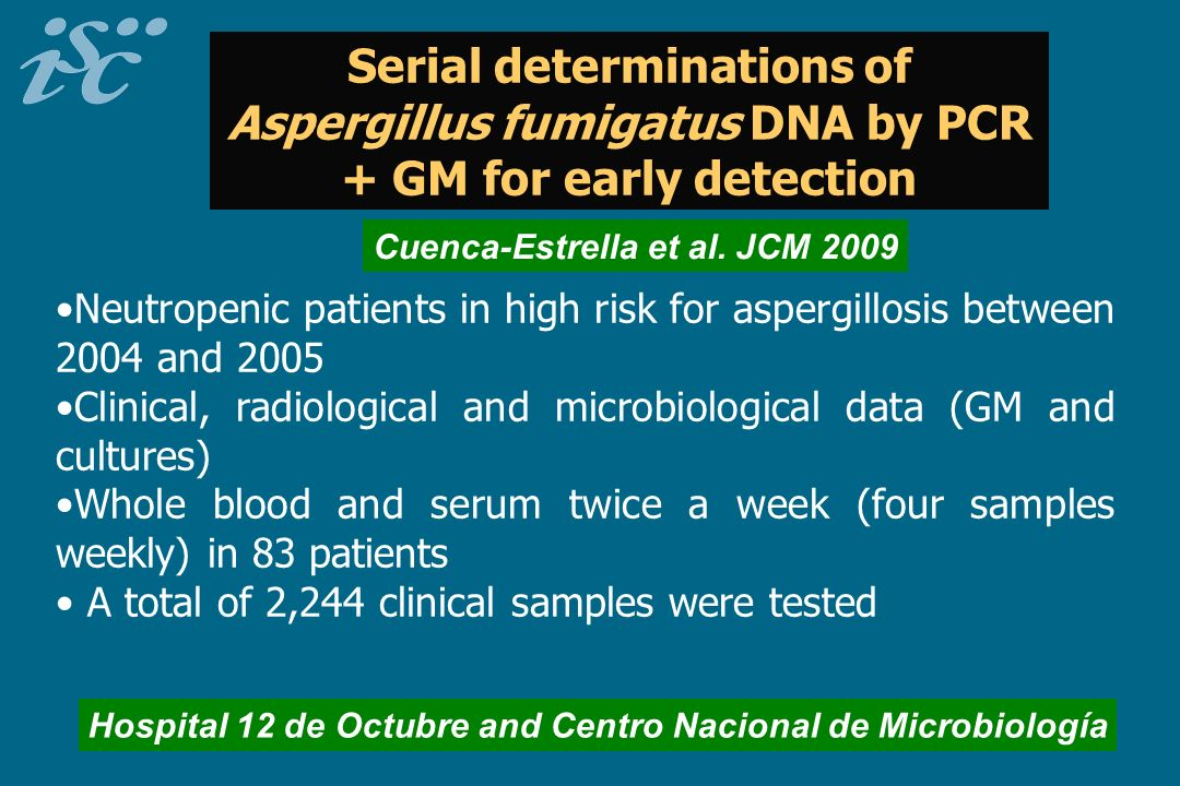 Serial determinations of Aspergillus fumigatus DNA by PCR + GM for early detection