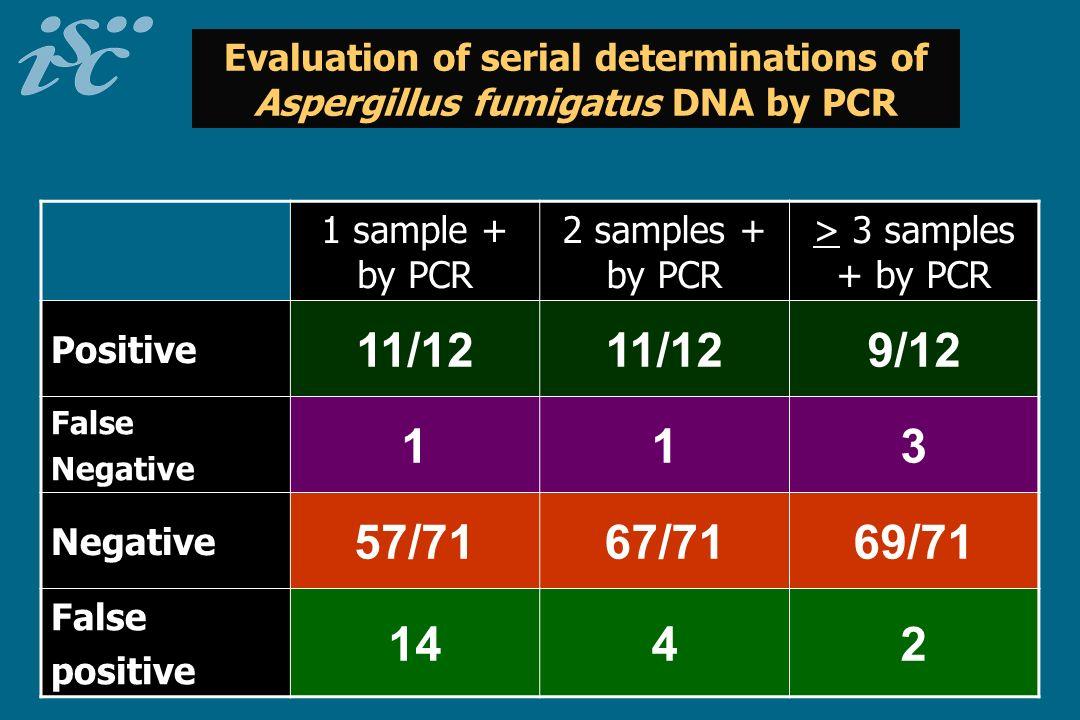 Evaluation of serial determinations of Aspergillus fumigatus DNA by PCR