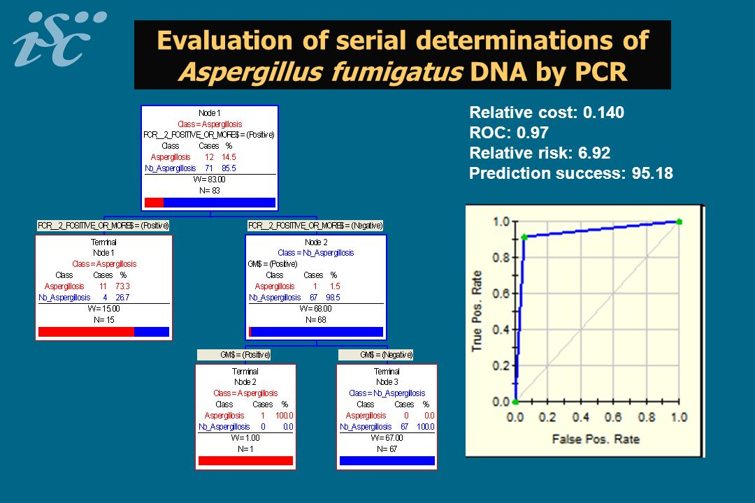 Evaluation of serial determinations of Aspergillus fumigatus DNA by PCR