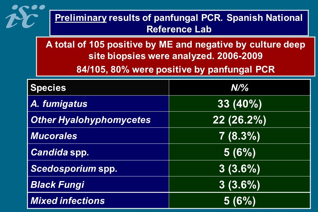 Preliminary results of panfungal PCR. Spanish National Reference Lab
