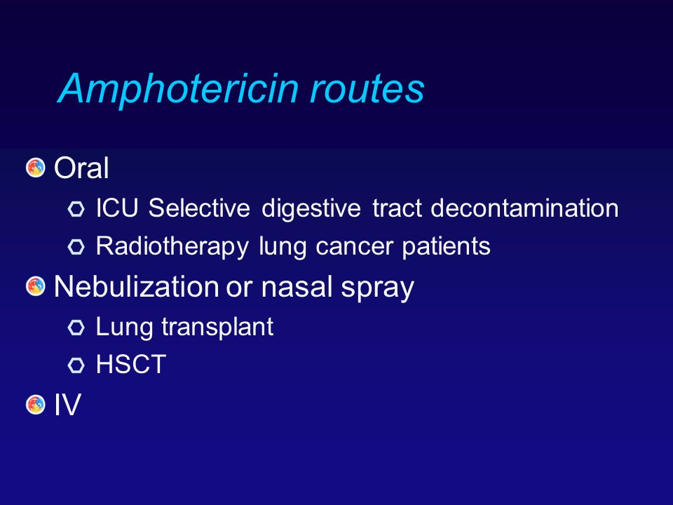 Amphotericin routes Oral Nebulization or nasal spray IV