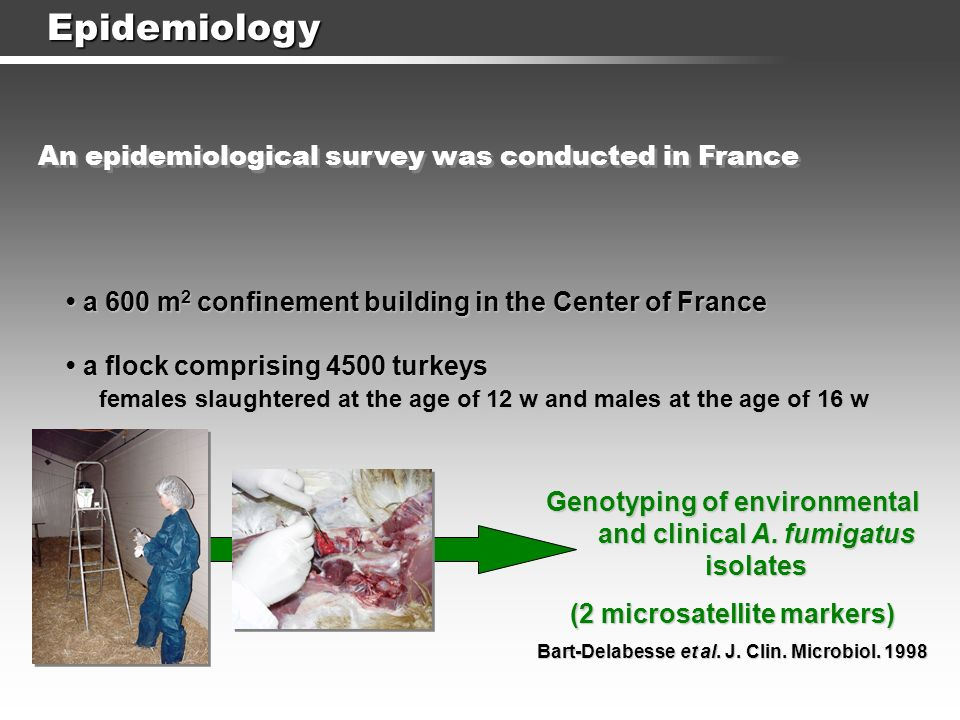 Epidemiology An epidemiological survey was conducted in France