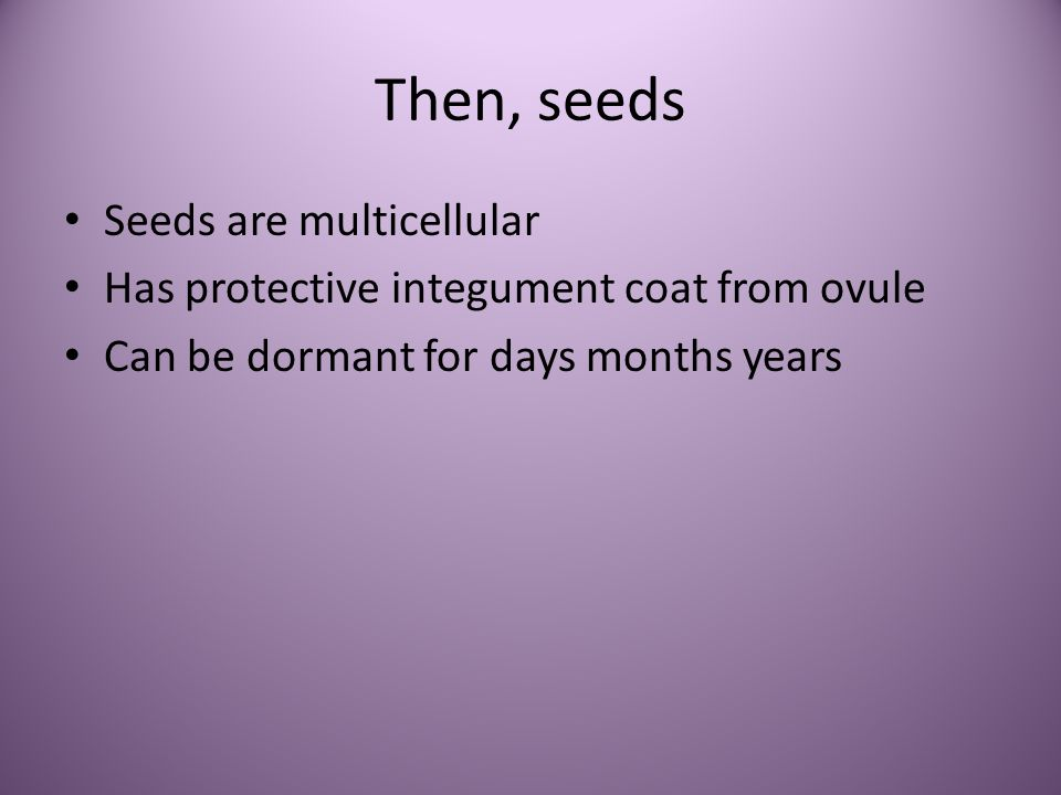 Then, seeds Seeds are multicellular