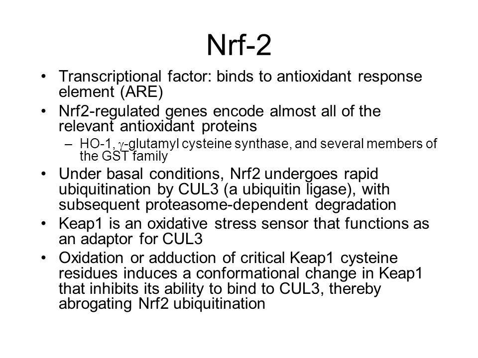 Nrf-2 Transcriptional factor: binds to antioxidant response element (ARE)