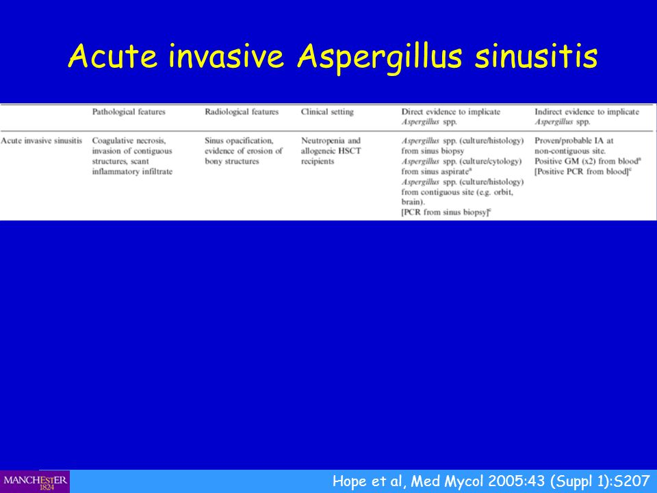 Acute invasive Aspergillus sinusitis