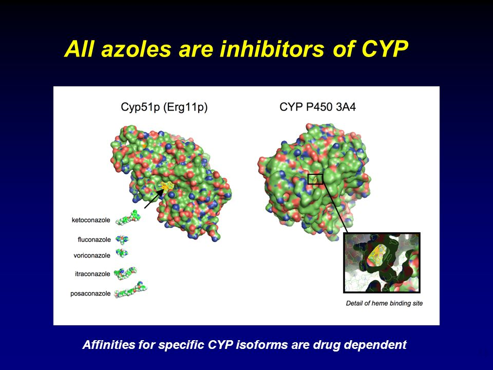 All azoles are inhibitors of CYP
