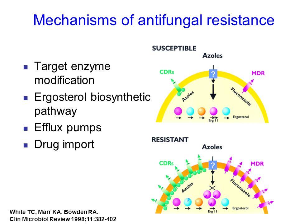 Mechanisms of antifungal resistance