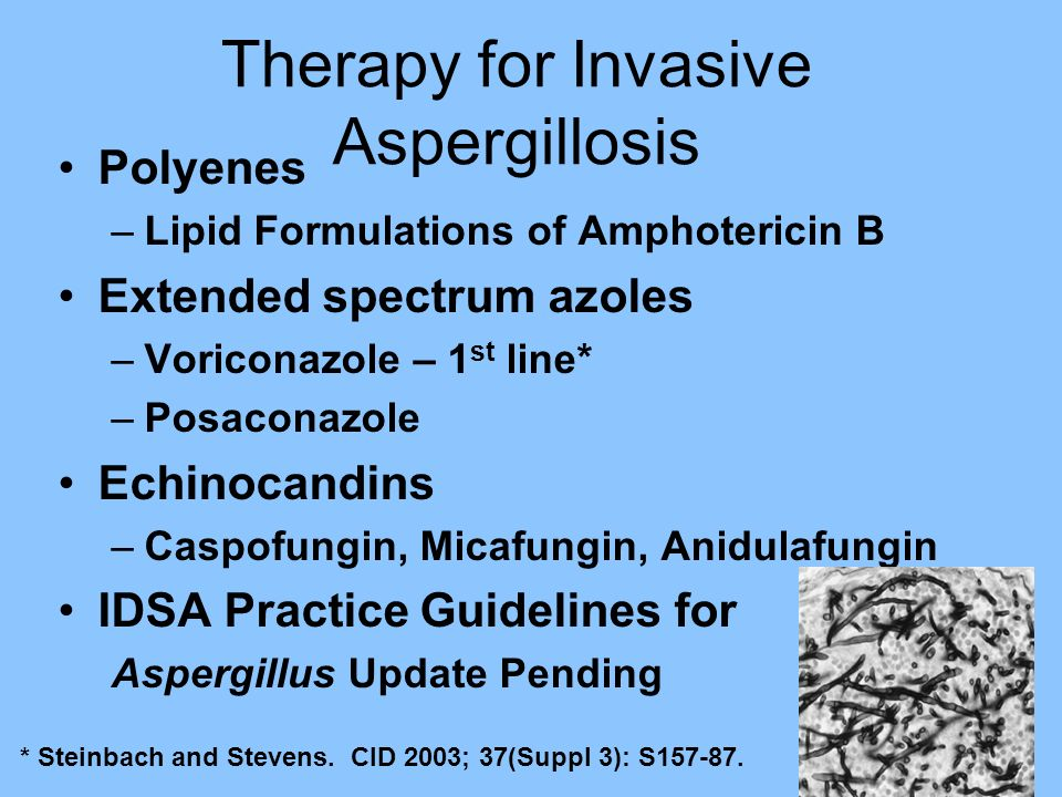 Therapy for Invasive Aspergillosis